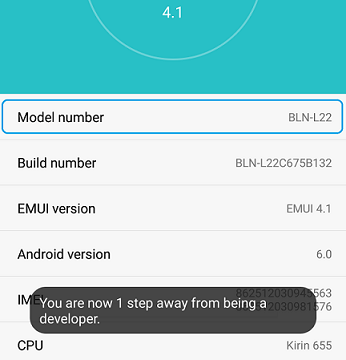 Enable Developer Option on Honor 6x